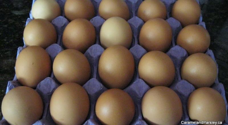 Fresh Organic Eggs – Cage Free
