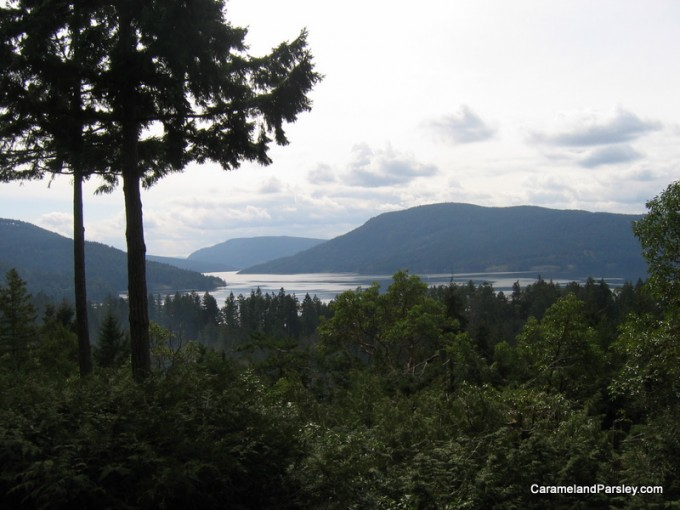 Island view - Beautiful B.C. Coast and Islands
