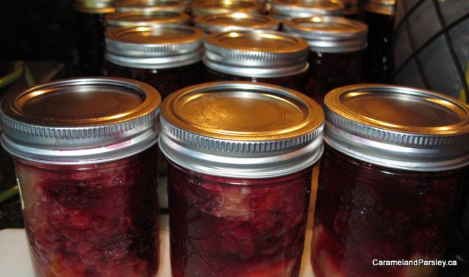 Blackberry and Rhubarb Conserve