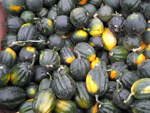 Acorn Squash at Farm market