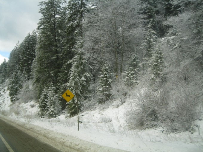 Winter driving - Highway 3