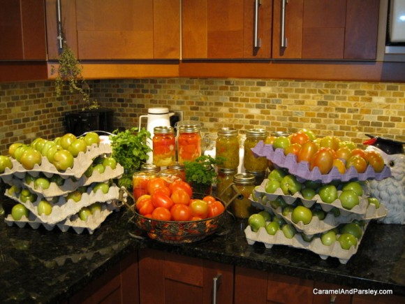 Home grown and preserved tomatoes - all chemical free