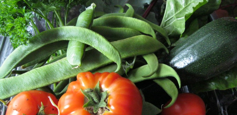 Pesticide Residue in Fresh food