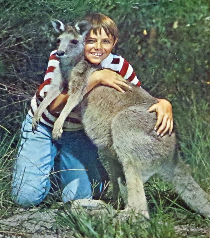 """Skippy the Bush Kangaroo"" old poster - found in a shed"