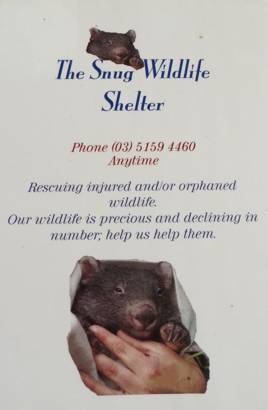 The Snug Wildlife (Wombat) shelter near Cassilis, Victoria