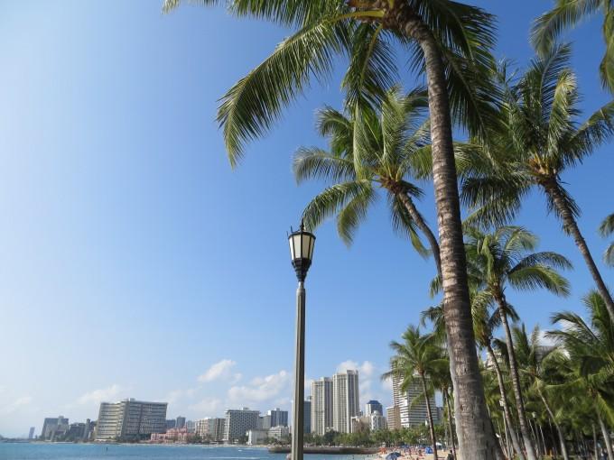Winter Waikiki