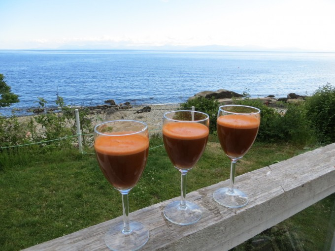 Cheers to your good health! Summers here with time for fresh vegetable juice with lots of energy at the beach