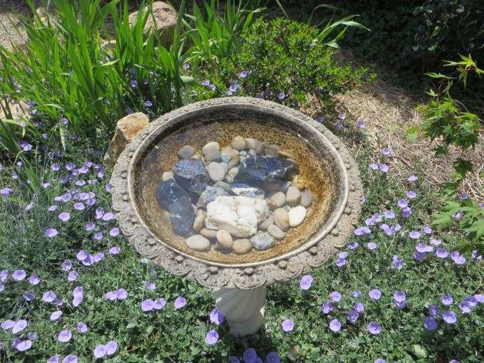 Plan to add a new garden feature such as this bird bath ~ such as this tranquill private garden Coastal Victoria, Australia