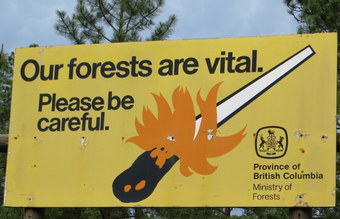 Be cautious and protect our forests