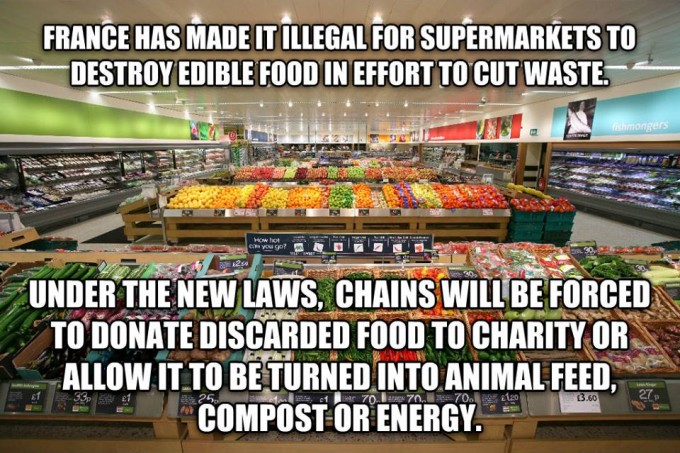 New France law making it illegal to discard edible food