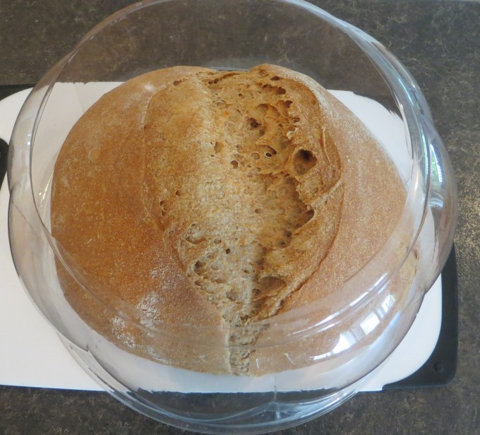 The photo shows the cover on the cooked loaf - fits fine when proofing - covered with a cloth