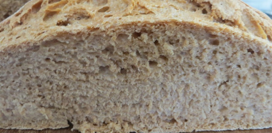How to Bake Basic Whole Wheat Sourdough Bread