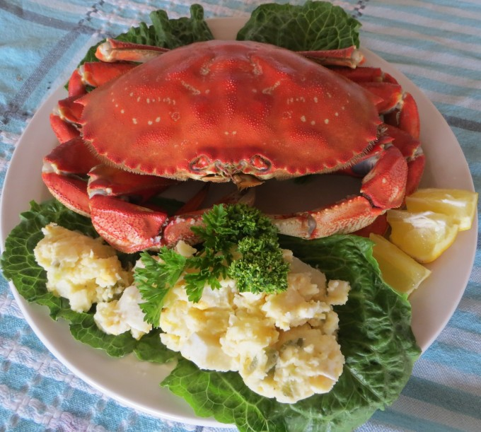 Dungeness crab delicacy