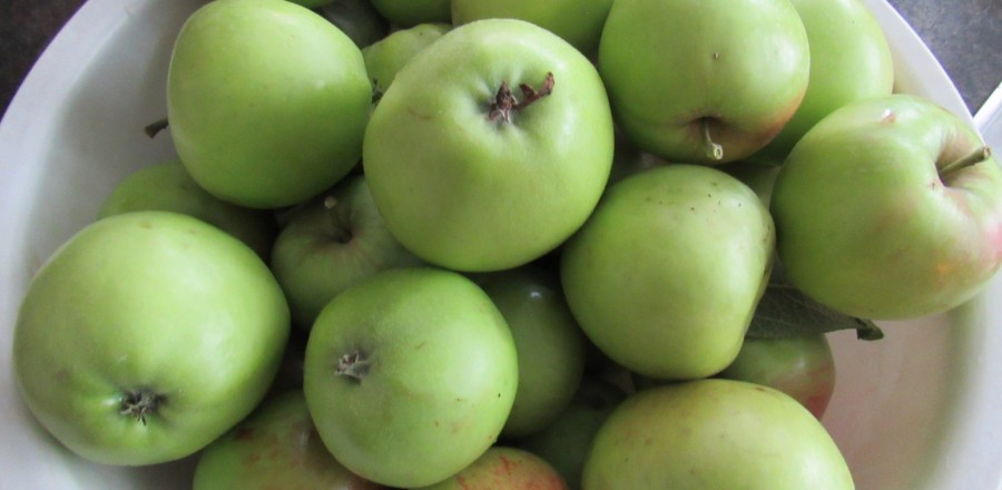 How to Can Green Apple Sauce