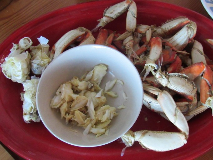 Freshly caught & cooked Dungeness crab - a perfect summertime dinner