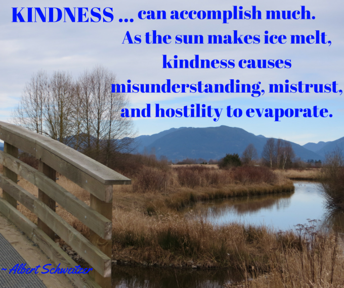 Kindness is ... Top CAP poster for 2017