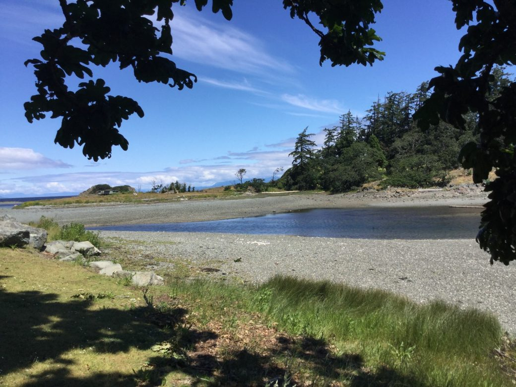 Pipers Lagoon Park & Beach a relaxing place to walk & watch the Bald Eagles & Herons