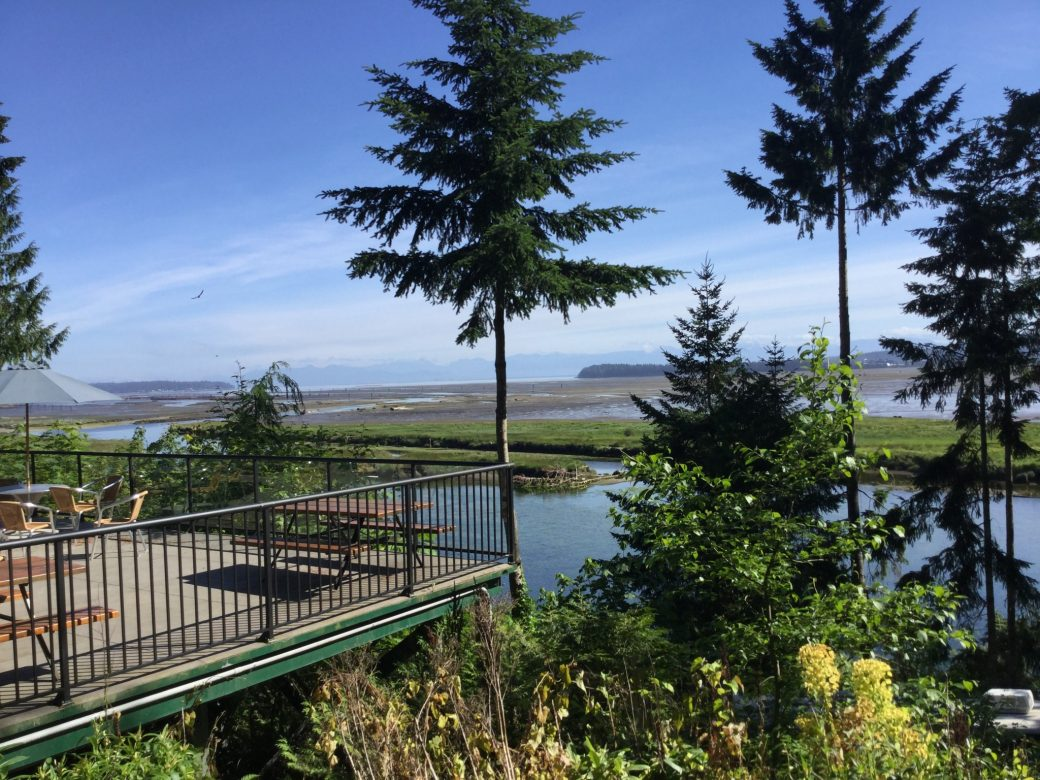 The view of Nanaimo & the Estuary from the Living Forest RV camp cafe