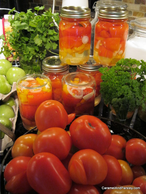 Fresh picked and canned organic tomatoes