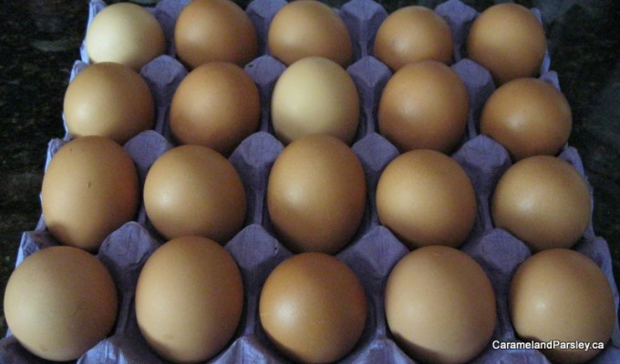 A great meal from fresh organic eggs