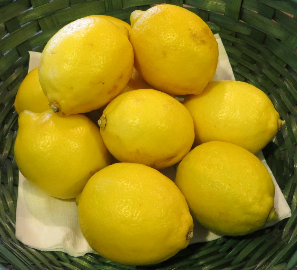 Organic lemons always a great place to start
