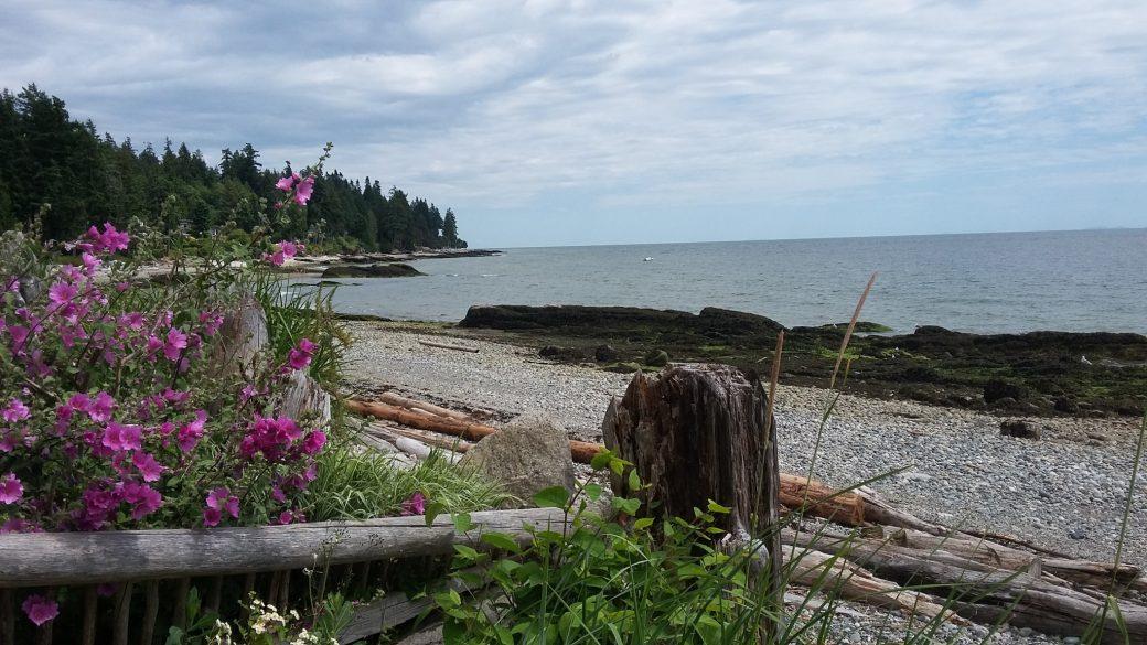 Relaxing ocean waterfront