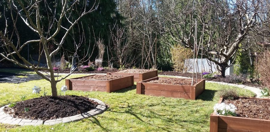 New Raised Bed Gardens for Spring